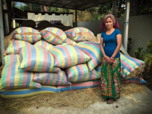 Srey Pouv: Rice Microfinancier, Siem Reap, Cambodia